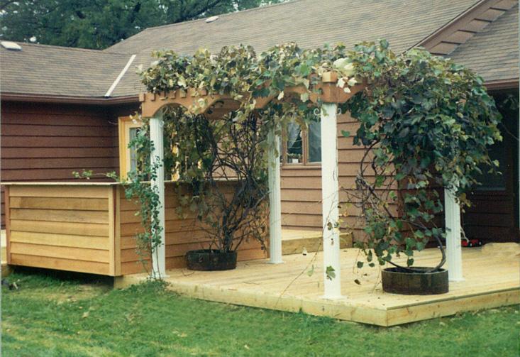 Pdf Grape Arbor Design Plans Free